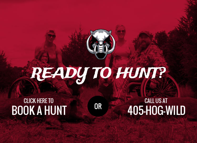 Book your hunt now